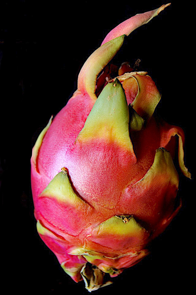 One whole dragon fruit with black background