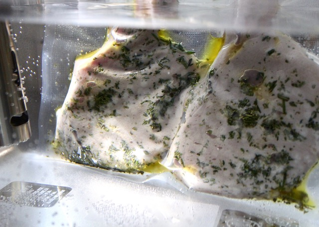 two pork chops with herbs in sous vide bag in water