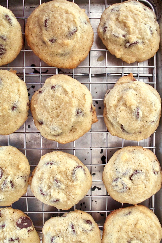 several coconut flour chocolate chip cookies on a cooling rack
