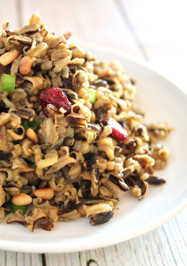 close up of cranberry wild rice on a white plate