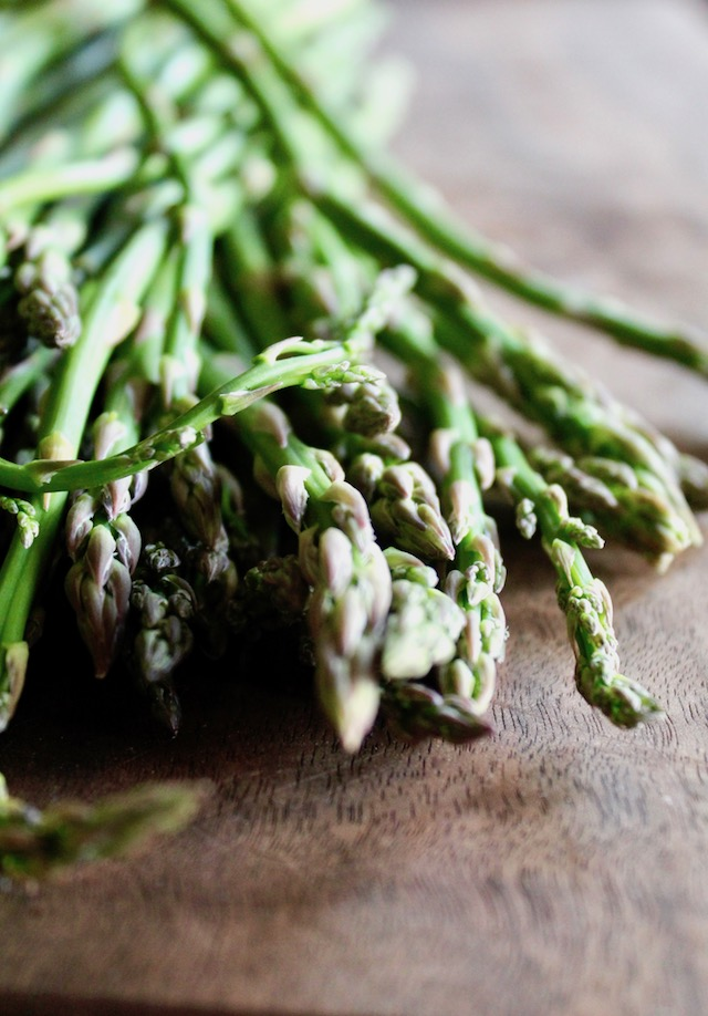 close up of asparagus spear tips