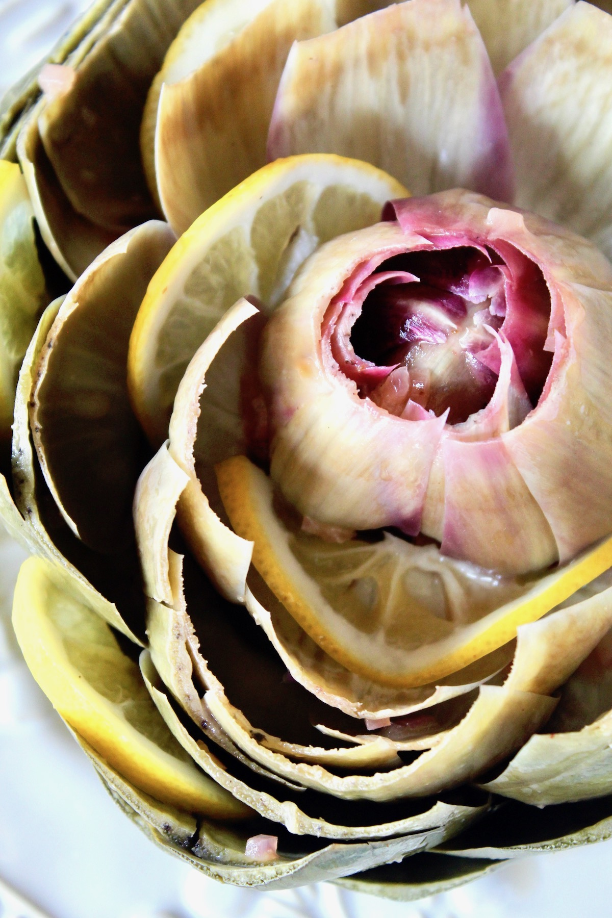 close up of Steamed artichoke with lemon beurre blanc and lemon slices between the leaves on a white plate